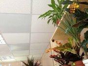 Современный инфракрасный обогрев потолков от «ФлексиХИТ» - foto 1